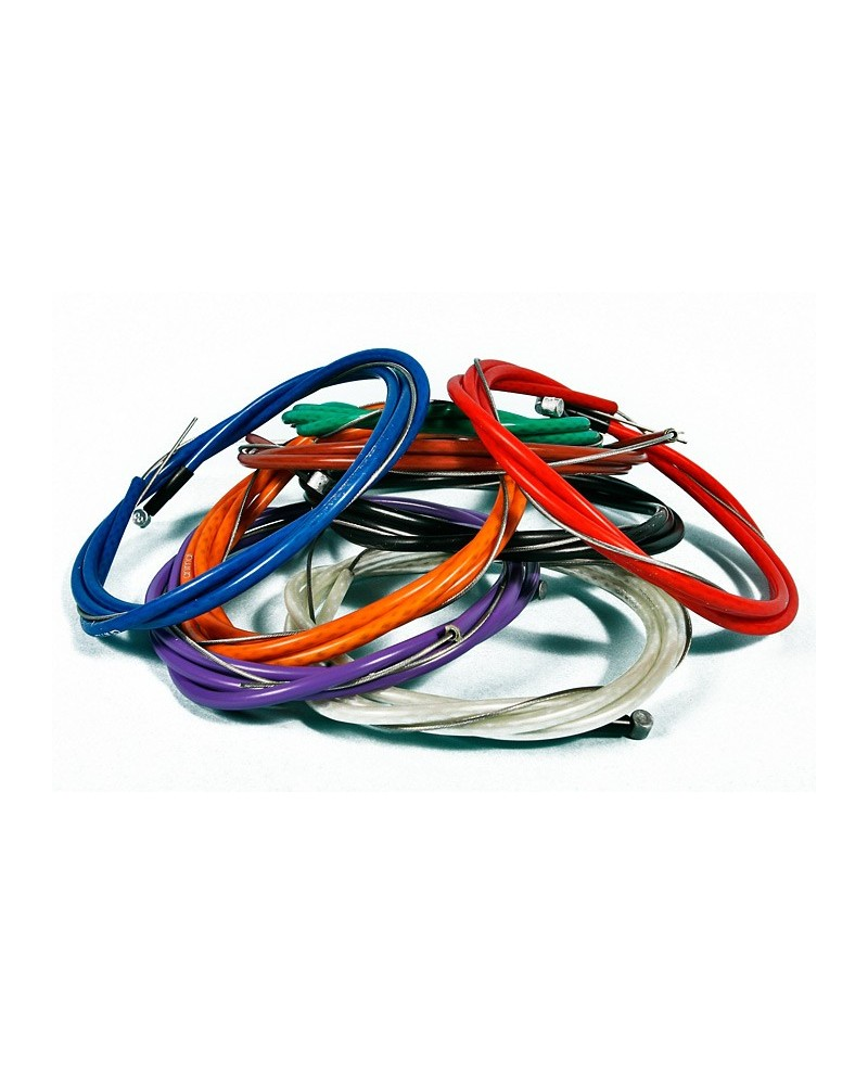 Animal cable Linear ilegal